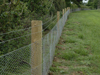Fencing - Rabbit Fencing